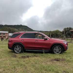 Mercedes-Benz 2020 GLE