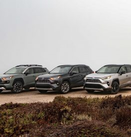 3 Toyota RAV4s parked near a beach
